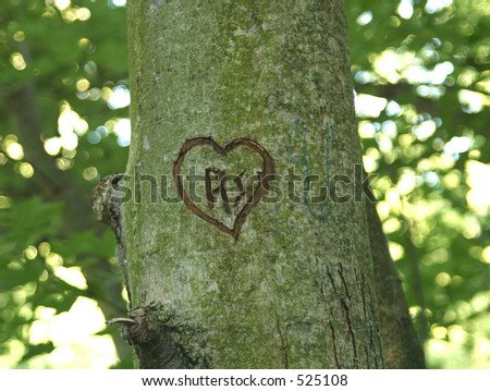 Intials and heart carved in tree - stock photo