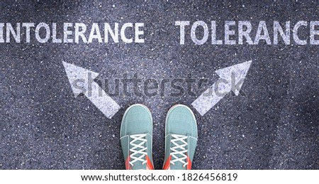 Intolerance and tolerance as different choices in life - pictured as words Intolerance, tolerance on a road to symbolize making decision and picking either one as an option, 3d illustration Stock fotó ©