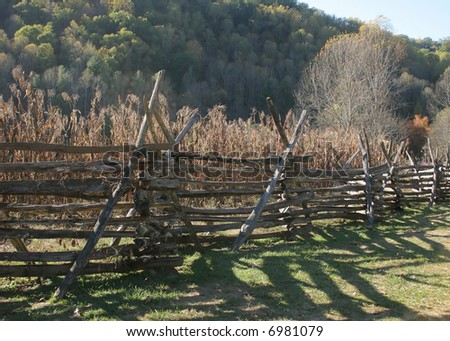 Intricate fence