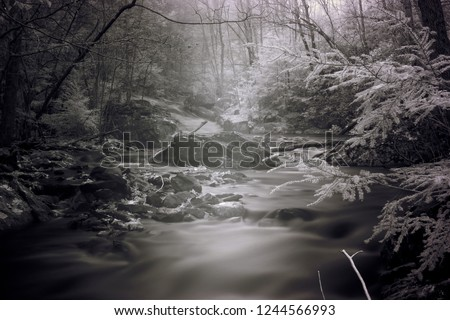 Invisible Infrared Light Illuminating Mountain Stream, Black And White Infrared Photography
