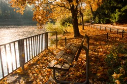 Invitation to relax in the beautiful autumn nature:  Vivid morning in colorful park with branches of trees. Scenery of Indian Summer with lake, sunlight and reflections on the water surface.