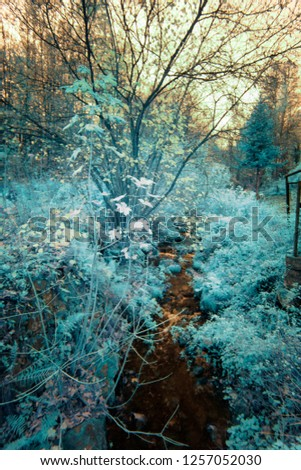 IR - infrared photo - mountain river