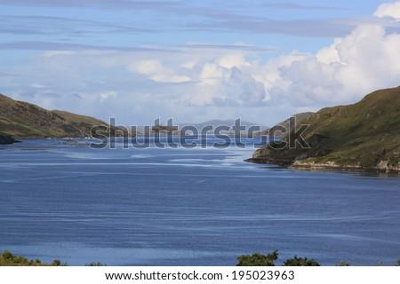 Ireland Fjord #195023963