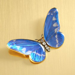 Iridescent butterfly pin with diamonds on reflective gold surface