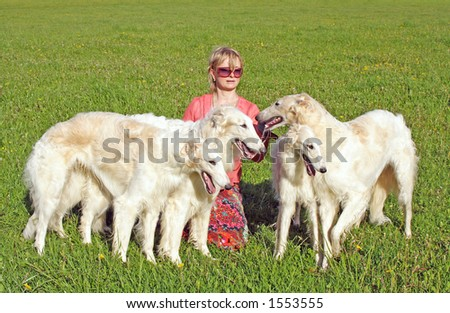 Irina Korshunova - the Moscow cynologist with the thoroughbred borzoi dogs.  Russian borzoi  dog - very courageous and fast hunting dog. Works on a hare, the fox and even the wolf.