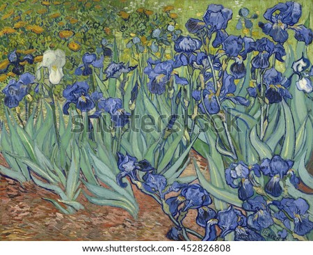 Irises, by Vincent van Gogh, 1889, Dutch Post-Impressionist painting, oil on canvas. Van Gogh painted this in the garden of the asylum in Saint-Remy, France in May 1889. The cropped composition was l