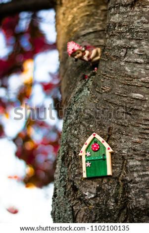Irish fairy door on the tree