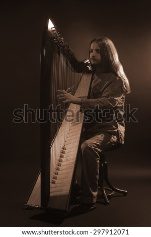 Irish harp player. Musician harpist music performer portrait