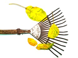 Iron fan for cleaning leaves hand tools. Agricultural activities. Farmer. Rake the foliage of trees. Hand tools. White background. Place for your text. Background image.