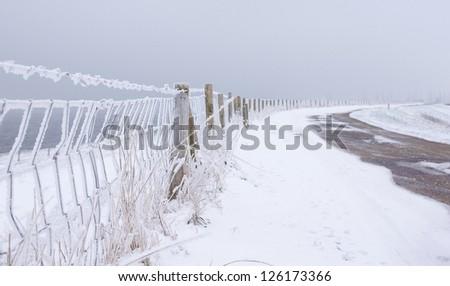 iron fence on a winterday - stock photo