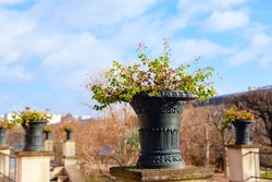 Iron flower pot in ancient style . City park in the spring