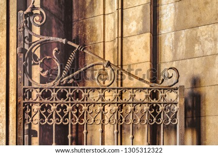 Iron ornate door detail background photo #1305312322