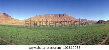 Irrigated field, Colorado River and Red Rock along Route 28, Utah