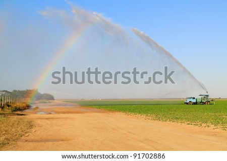 Irrigation of farmland to ensure the quality of the crop of squash with room for your text