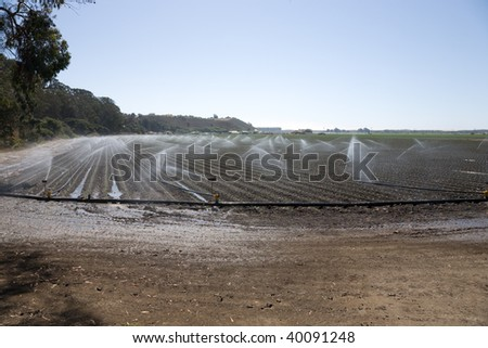 Irrigation plant in action, Lompoc in California, USA