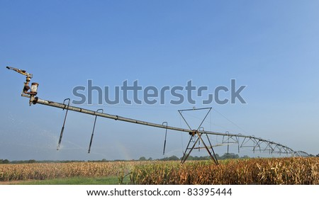 Irrigation sprinkler in the corn field