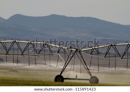 Irrigation sustains the agriculture of southern Colorado's San Luis Valley