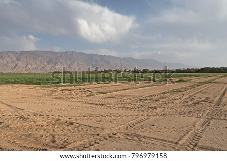 Desert farming irrigation in the Negev, Israel  Free Images