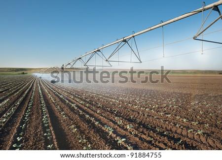 Irrigation Wheel Line in field
