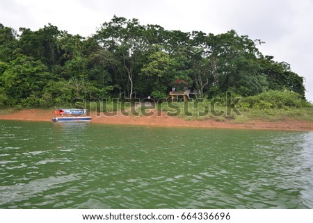 island and forest on reservoir #664336696