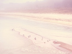 Island coastline within misty morning. Landscape with sandy beach and sea level ending in clouds. Warm Toned image