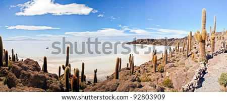 island in Salar de Uyuni, Bolivia