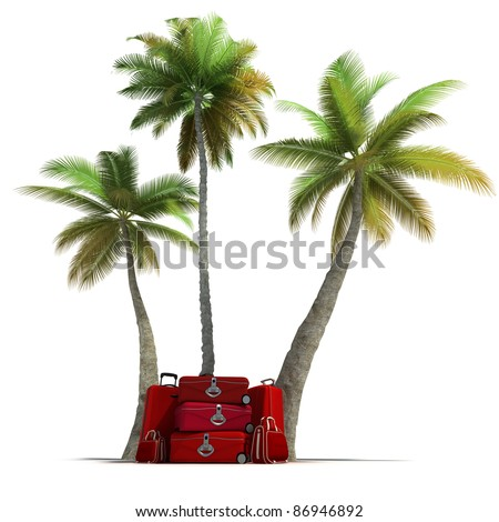 Island like composition showing tropical vegetation and beautiful red  luggage