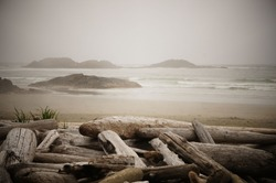 Islands dot the horizon on a driftwood-lined beach on a misty morning near Tofino, British Columbia