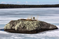 Islet, tiny stone island on a Scandinavian winter lake, but it has a whole natural system from lichens to trees. Boreal country. The wonders of nature nearby. For Earth watchers