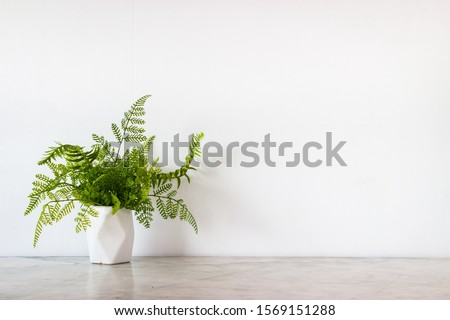 Isolate white jar and tropical green leaves place on grey marble surface table and white and clear Concrete wall. Abstract background  and nobody template with relaxation feeiling clean and clear.
