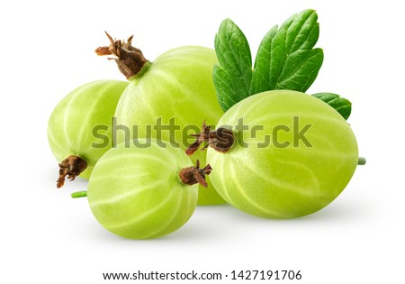 Isolatec gooseberries. Pile of green gooseberries isolated on white background with clipping path Stock photo ©