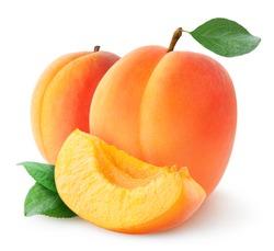Isolated apricots. Fresh apricot fruits isolated on white background