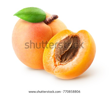 Isolated apricots. Fresh whole apricot fruit with leaf and half isolated on white background with clipping path