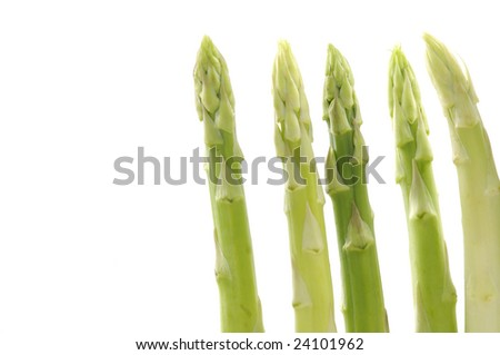 Isolated asparagus. on white background