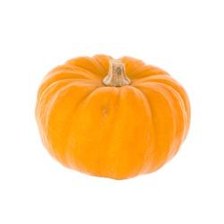 Isolated autumn yellow pumpkin 2019