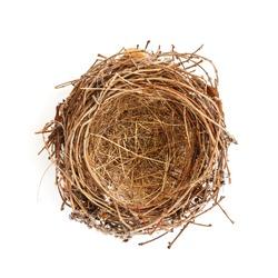 Isolated Bird Nest on White