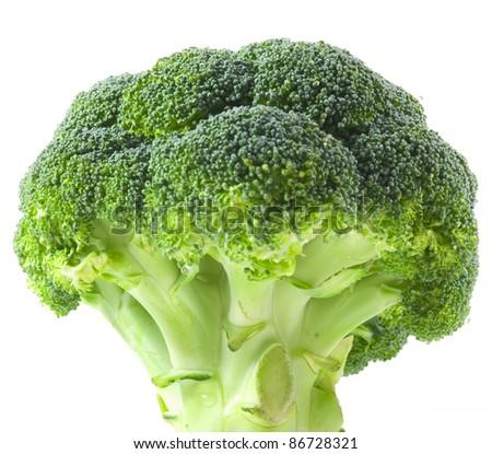 Isolated broccoli on white background