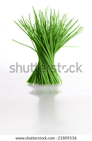 Isolated bunch of chives spiraling up, reflecting on glossy white surface