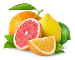 Isolated citrus fruits. Orange, grapefruit, lemon and lime isolated on white background