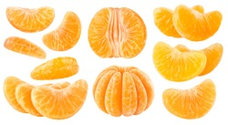 Isolated citrus segments. Collection of tangerine, orange and other citrus fruits peeled segments isolated on white background with clipping path