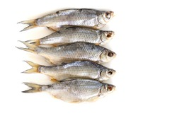 isolated close up top view dried salted caspian roach fish on a white background