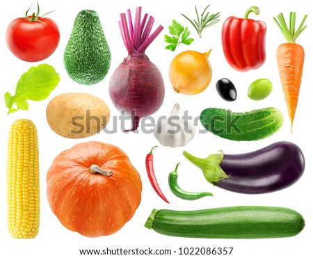 Isolated collection of 20 vegetables and herbs. Tomato, potato, beet, onion, peppers, cucumber, carrot, corn, pumpkin, eggplant, zucchini, lettuce, etc isolated on white background with clipping path