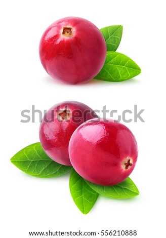 Shutterstock Isolated cranberries. Two images of cranberry fruits with leaves isolated on white background with clipping path