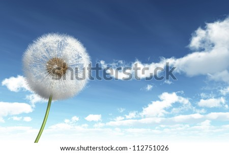 Isolated Dandelion on Sky background - High quality render