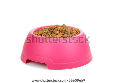 Isolated dish of dog food