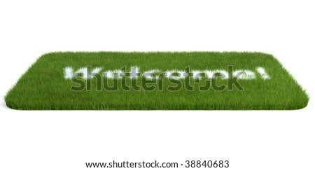 isolated doormat of grass on white background