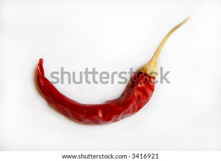 isolated dried red hot chili pepper
