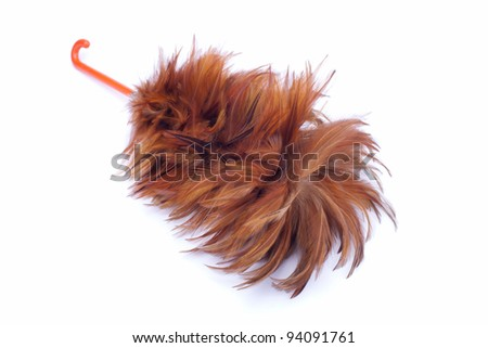 isolated feather duster