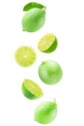 Isolated flying fruits. Falling lime fruits isolated on white background with clipping path