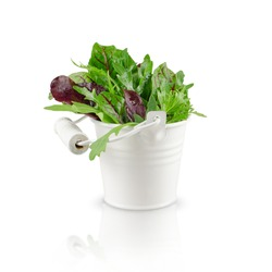 isolated fresh leaves in white decorative pail